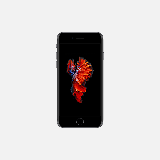 Kategorie iPhone 6S